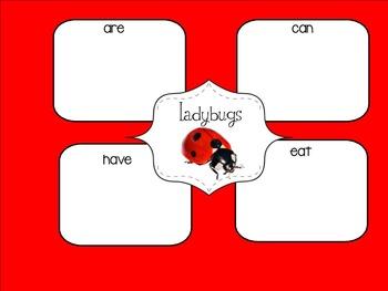 Ladybugs Graphic Organizer