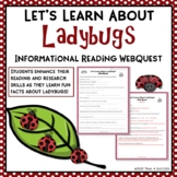 Ladybugs Internet Scavenger Hunt Reading Activity Common Core