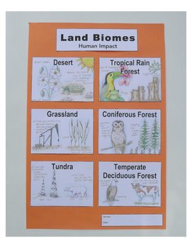 Land Biomes: Human Impact Group Poster NGSS