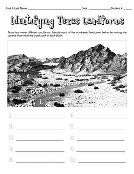 Landforms (Activity, Review & Quiz