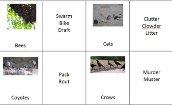 Language GO FISH for animals and their group names