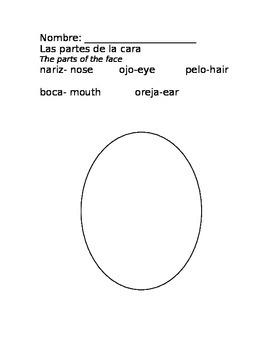 Las partes de la cara