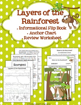 Printables Layers Of The Rainforest Worksheet layers of the rainforest flip book anchor by classroom chart review w