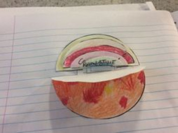 Layers of the Sun foldable &research sheet. Space physics