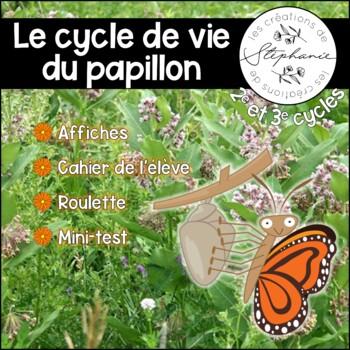 Le cycle de vie d'un papillon