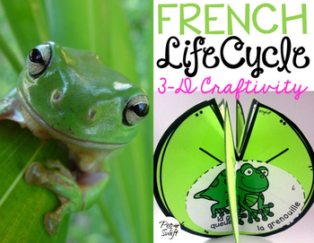 Le cycle de vie d'une grenouille - FRENCH Life Cycle Craft