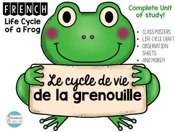 Le cycle de vie de la grenouille - Life Cycle of A Frog Co