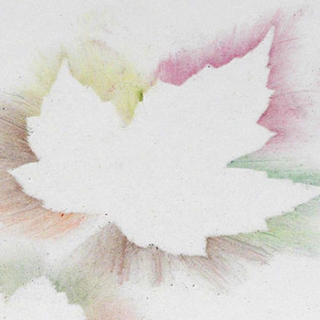 Leaf silhouettes with pencil dust