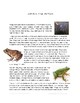 Learn About Frogs and Toads