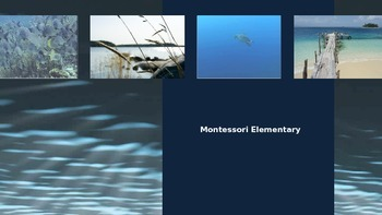 Learn About the Montessori Elementary Child