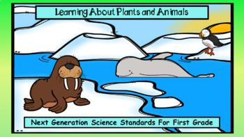 Learning About Plants and Animals  (Next Gen Science Standards)