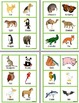 Learning about Animals (Flashcards, Worksheets and Activity)