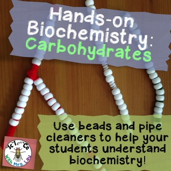 Hands-on Biochemistry: Carbohydrate Structure with Beads