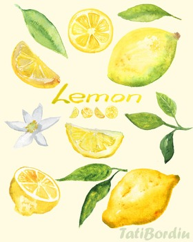 Lemon Watercolor Clip Art
