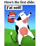 Les Expressions AVOIR illustrées (French PowerPoint)