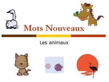 Les animaux: Activity Bundle