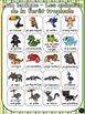 Animaux de la forêt tropicale - mur de mots et lexique (27