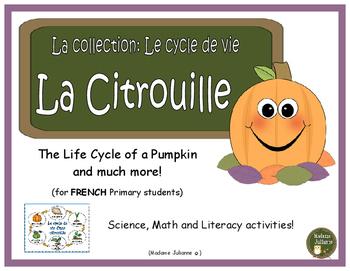 Le cycle de vie de la citrouille - French Pumpkins (life c