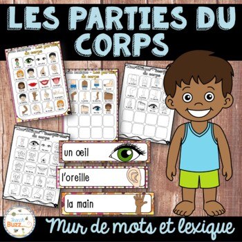 Les parties du corps - mur de mots et lexique - French Body Parts