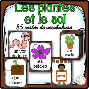 Les plantes et le sol - 40 cartes de vocabulaire