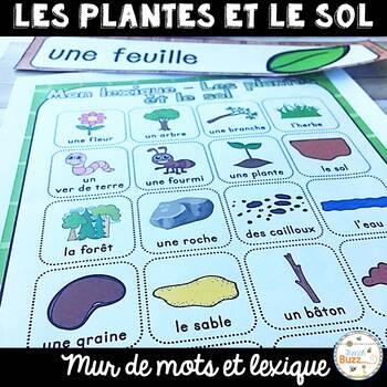 Les plantes et le sol - Vocabulaire et lexique - French Pl