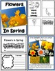 Lessons in a Jiffy: Flowers in Spring (Guided/Shared Readi