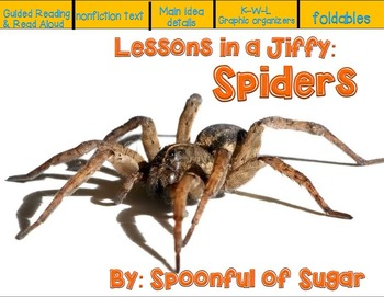 Lessons in a Jiffy: Spiders (Guided/Shared  nonfiction rea