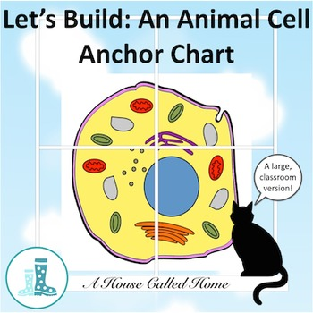 Let's Build: An Animal Cell Anchor Chart