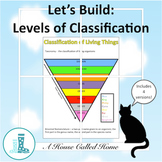 Let's Build: Levels of Classification