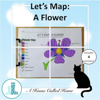 Let's Map: A Flower