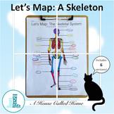 Let's Map: The Skeletal System