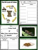 Let's Take a Closer Look: More Insects! (A K-2 Close Readi