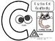 Letter Cc Activity Pack (CCSS) FREEBIE