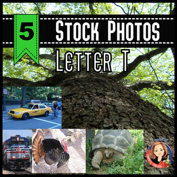 Letter T Stock Photos of Train, Tree, Turtle, Taxi, and Turkey
