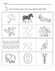 Letter Zz Words Coloring Worksheet