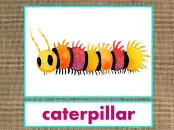 Letters A-M Alphabet PowerPoint BUNDLE Fun/Colorful Words/