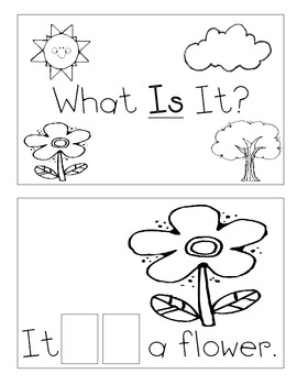 Level A Sight Word Reader-Is