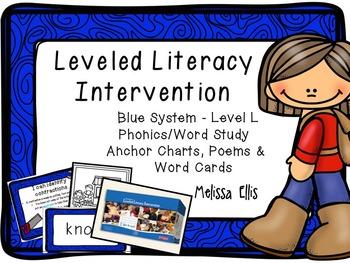 Leveled Literacy Intervention (LLI): Blue Level L: Anchor
