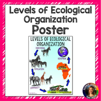 Levels of Ecological Organization Poster