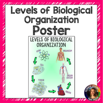 Levels of Biological Organization Poster