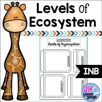 Levels of Ecosystem: Layered Foldable