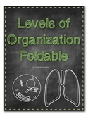 Levels of Organization Foldable