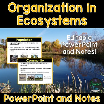 Levels of Organization in Ecosystems PowerPoint and Notes