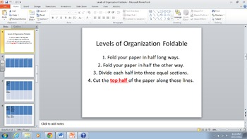Levels of Organization in the Ecosystem Foldable