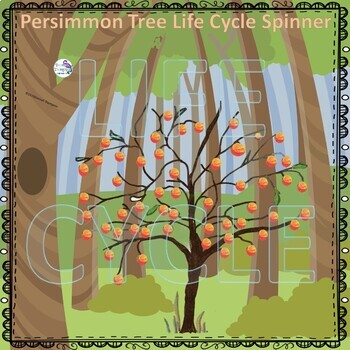 Persimmon Life Cycle (Peekaboo Spinner Wheel)