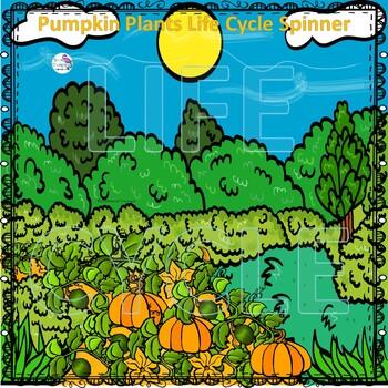 Pumpkin Life Cycle (Peekaboo Spinner Wheel)