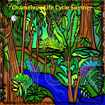 Chameleon Life Cycle (Peekaboo Spinner Wheel)
