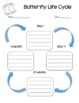 Life Cycle Activity Pages