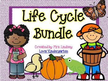 Life Cycle BUNDLE {Apple, Pumpkin, Frog, Chick, Plant and