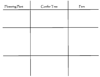 Life Cycle Comparison Chart